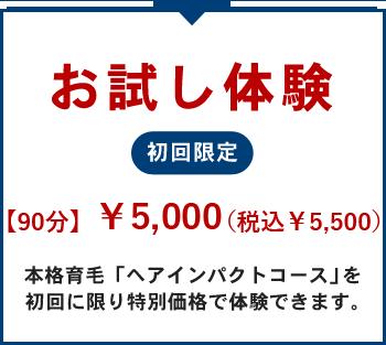 本格育毛ヘアインパクト お試し体験5,000円約90分